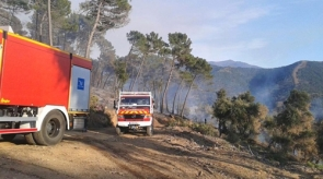 The Igualeja fire started at noon and firefighters had it fully controlled by 6 pm