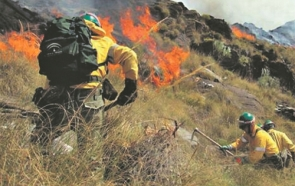Firefighters from the Infoca wildfire brigade