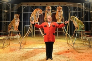 Circus in El Ejido features wild animals, including tigers and sea lions