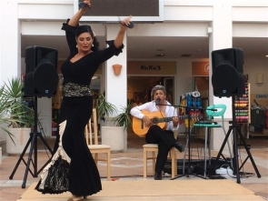 A family flamenco night in Mojacar was shut down early by police this week, adding further controversy over the town's current noise laws