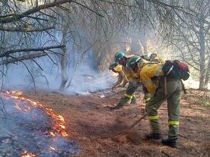 Members of the Infoca wildfire brigade during the San Roque blaze Photo: Infoca