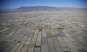 Almería's vast greenhouse network can be seen from miles away