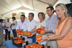 Officials at the event displaying some of the competing tomatoes (Photo: CDSN)