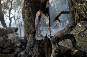 Fire fighters are still keeping watch to ensure embers like these don't reignite